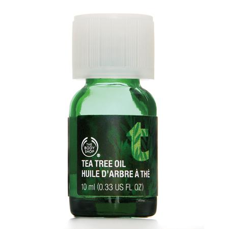Les vertus de l huile essentielle d arbre th tea tree my healthy and beauty tips - Huile essentielle d arbre a the ...